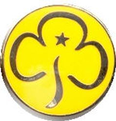 Current Brownie Promise Badge