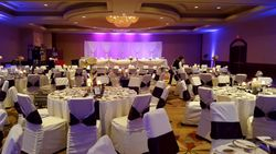 Purple Lavender Wedding 4