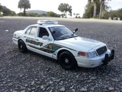 Collier County Sheriff's Office (New Style)
