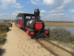 Train to Barilla Beach