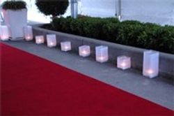 red carpet hire and decorations