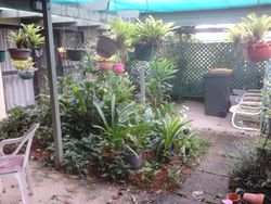 Cottage Courtyard Before