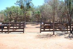 Front of paddocks