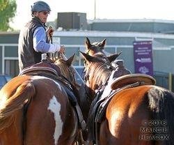 Leading Lead Ponies