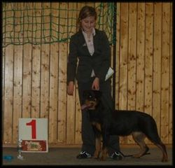 Zelda 6 mnd og Michelle Best in Show junior handling