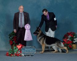 Stryker Reserve Best in show