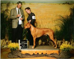 Epic - 4th place - Bred by Exhibitor