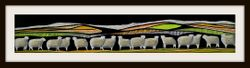 Southern Ewes Zealand series 6