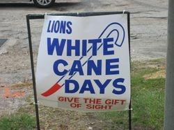 White Cane Days