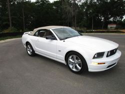 12.07 Mustang GT