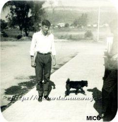 Mico e o Birgulas