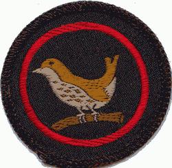Wren Patrol Badge