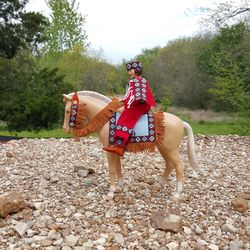pancho tack ans Joise Indian outfit