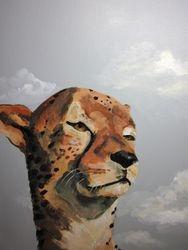 Cheetah, 2012