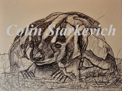 """Erratic Drawing - Badger (12 by 16"""" mixed media on canvas)"""
