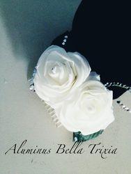 Aluminus