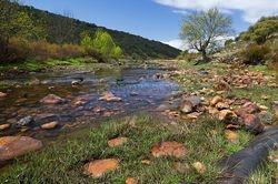 rio almonte (extremadura, spanje)