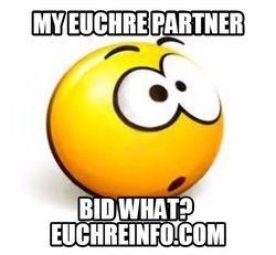 My Euchre partner bid what?