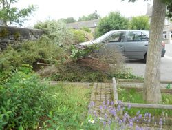 The parking area and pile of brush - after