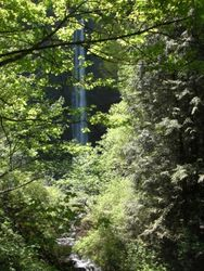 Waterfall near BSRC