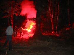 The Celebration Bonfire