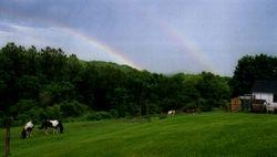Double Rainbow June '09