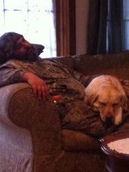 Little nap before the afternoon hunt