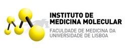 IMM logo positive-2