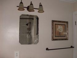 Bathroom Remodel- Lights