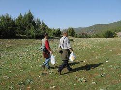 Fungi collection in Albania.