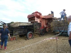 Threshing/baling  display