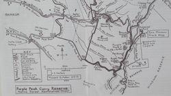 Purple Peak Curry Reserve