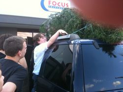 Getting our school Christmas Tree