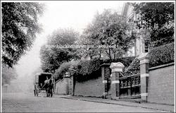 Blackheath. 1919.