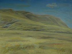 """Flood plain of South Sask. River near Bow Island, AB ( 16 by 20"""" oil on canvas)"""