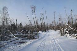 Cowan Trail