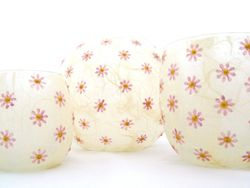 Cream and Rose Pink Daisies