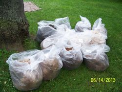 12 bags full and ready for the fiber mill