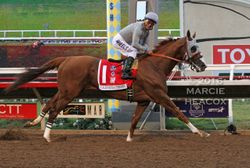 California Chrome wins the Pacific Classic
