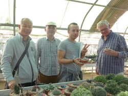 Some Chinese visitors who came to see the Haworthias