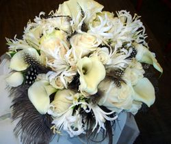 Callas and Feathers