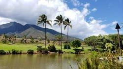 Tropikalna Plantacja na Maui