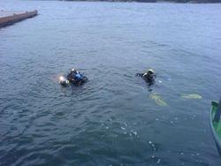 Dykare i vattnet!