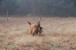 Art of the stick with his Sister
