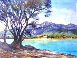 'Trouser Point, Flinders Island Tas'