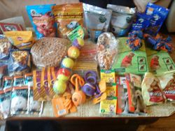 11 Dec 09  -  Many thanks to Karen Waspe for this fantastic parcel.  Apart from wormers and flea treatments there are many things for the dogs (and cats) to enjoy xxx