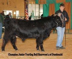 Basswood 4 of Dundonald