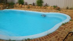 Regular Pool Maintenance Job4