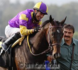 Alonso Pats Pegasus