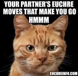 Your partner's Euchre moves that make you go hmmm.